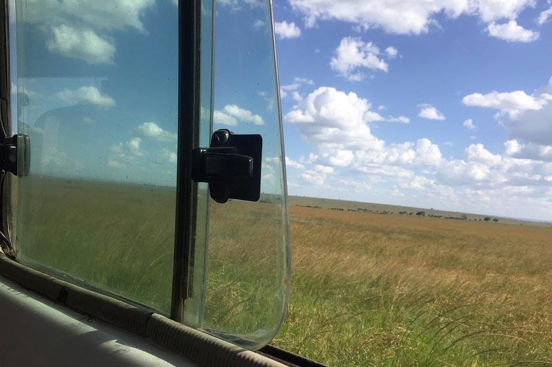 травянистые равнины заповедника масаи мара