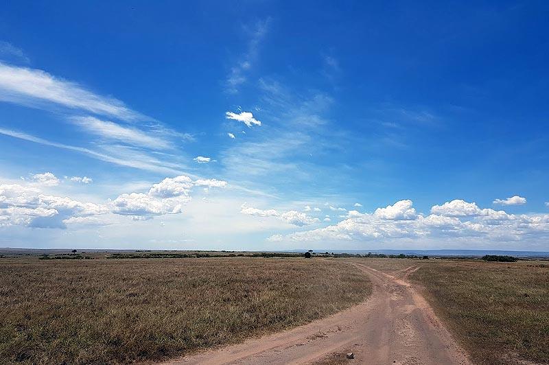 под африканским небом в масаи мара