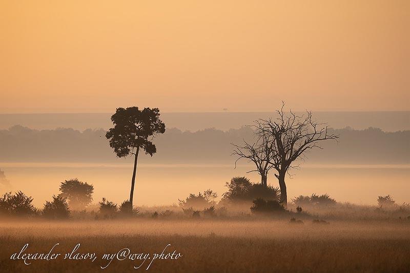 зрелищные закаты масаи мара