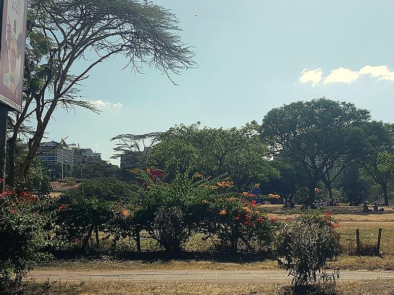 краешек огромного и популярного городского парка ухуру