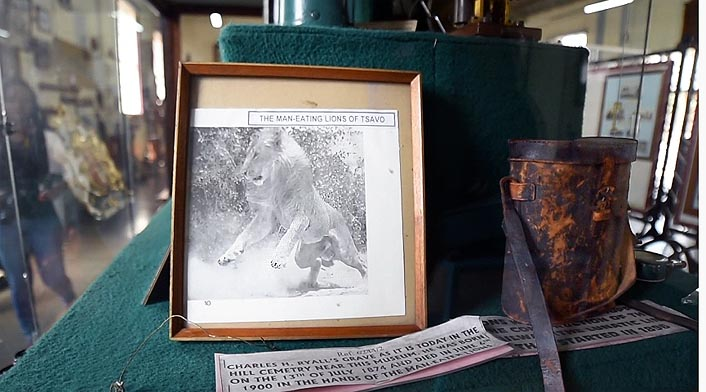 содержимое коробочки служит напоминанием о львах людоедах