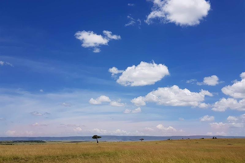 открытая равнина центральных районов кении