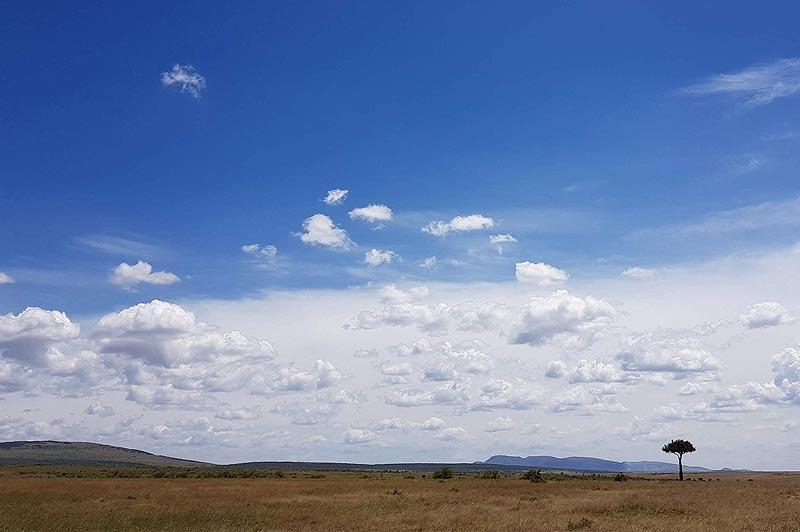 плодороднейшие земли кении