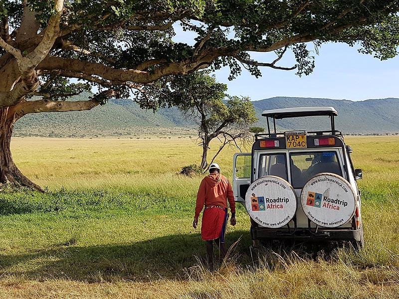 перемещаться по масаи мара можно только туристических автобусах или на внедорожниках