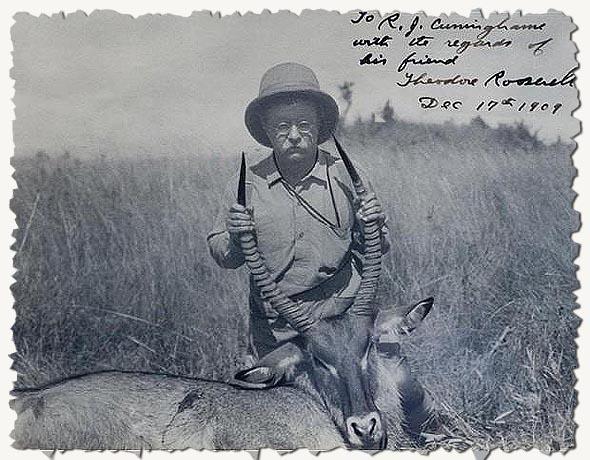 теодор рузвельт с застреленным животным