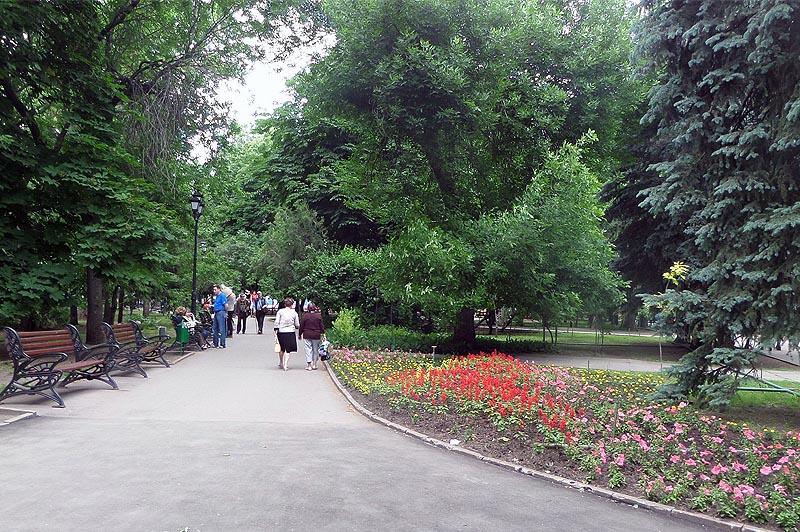 цветочные композиции на аллеях сада липки